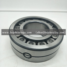 INA FAG LSL192320 CYLINDRICAL ROLLER BEARING